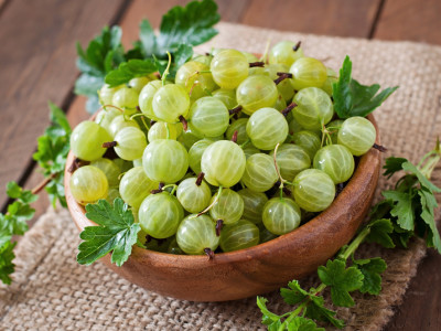Indian Gooseberry in Miami