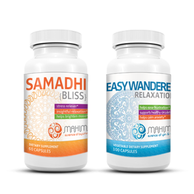 Samadhi plus Easy Wanderer