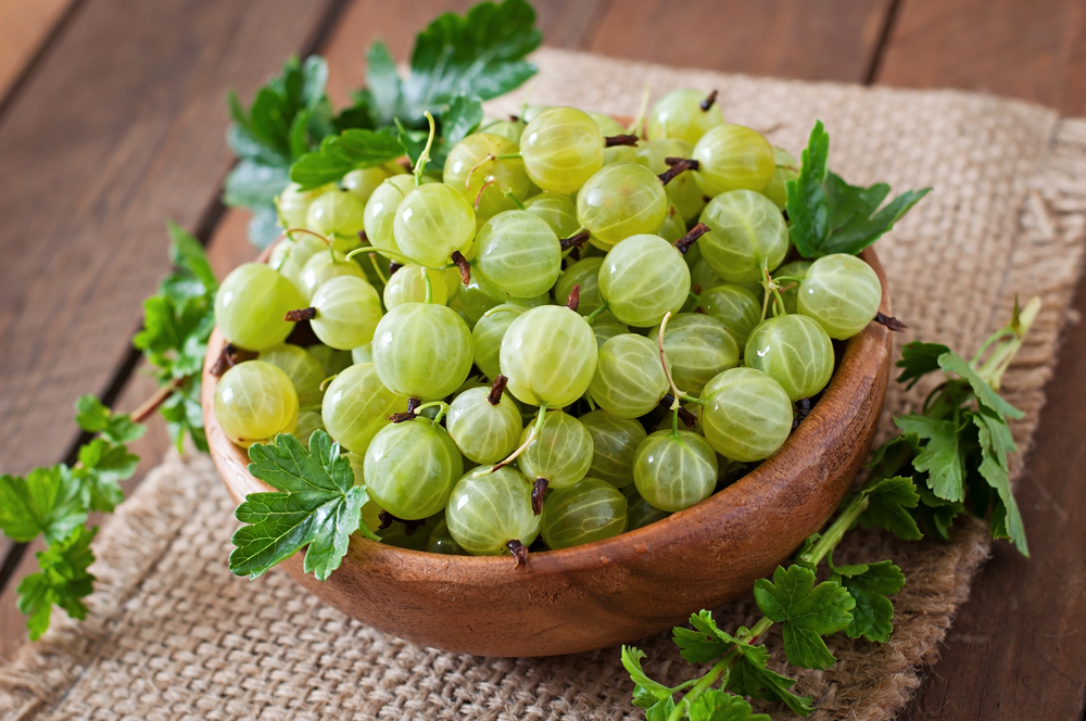 Indian Gooseberry in Miami |Mahima Center|spa